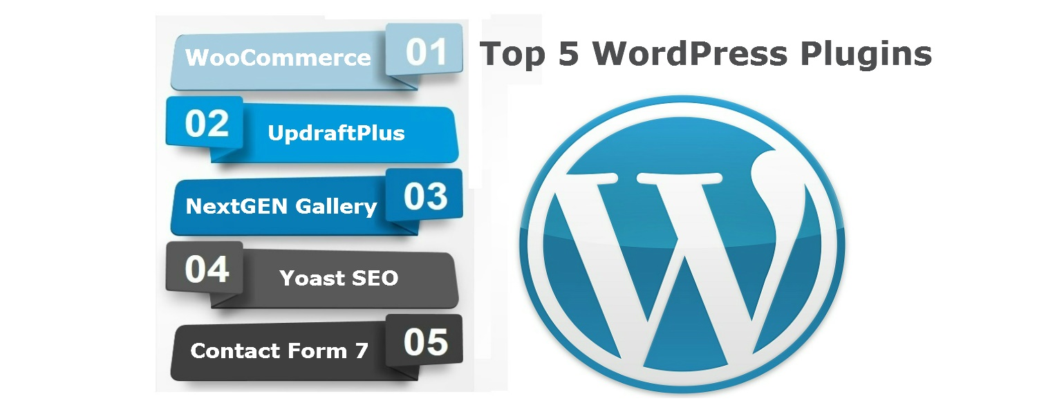Top 5 WordPress Plugins - Concept Infoway